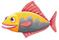 colorful big fish