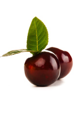 beautiful plum