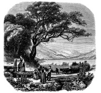 Antique illustration of Titi lake in the Black Forest
