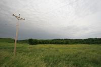 Windswept Iowa Prairie Landscape