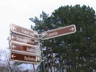 Czech pointers