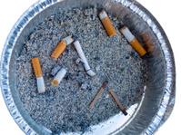 Cigarette Butts in a Tin Ashtray