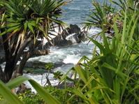 Hawaiian Lagoon