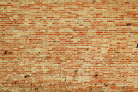 The wall texture