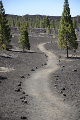 Pathway at Tenerife