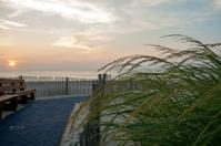 Sunrise on beach path