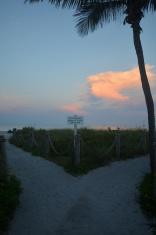 Divergent Path at Sunrise