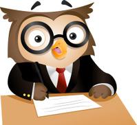 Cute owl character