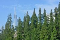 Trees and Skyscraper in Nanjing