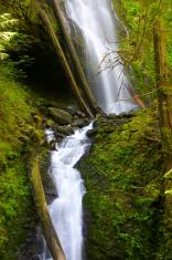 Murhut falls in the Olympic National Park