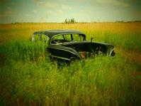 Abandoned Chevrolet Impala