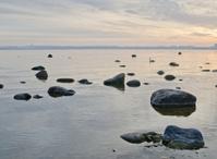 Stony coast of Baltic sea early in the morning