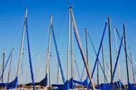 Masts of sailing boats at the marina