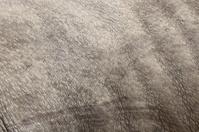 Rhino skin background