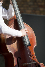 Close-up double bass