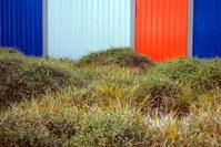 Corrugated Iron Panels & Plant Background