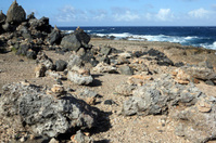 Rocks along Aruba's windward coast