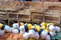 Lobster Fishing Equipment