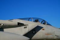 USAF F-15 Strike Eagle Fighter