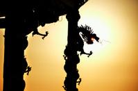 Dragon roll column statue silhouette
