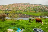 Colombian Slum