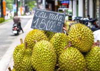 tropical fruit durian market near road