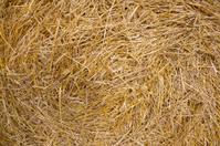Big straw roll