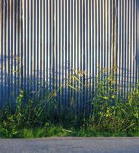 Corrugated fence