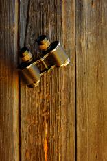 binoculars on  doors of the Caucasian sheepyards