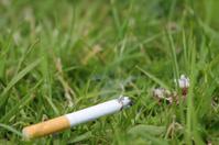 Cigarette in the grass