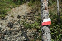 Mark at Hiking Trail