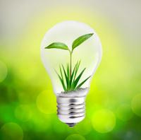 Green eco lightbulb with bokeh effect