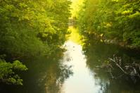 Cork City River