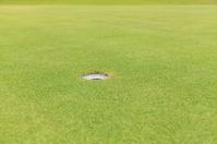 Golf hole on green grass