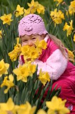 Child in yellow daffodils