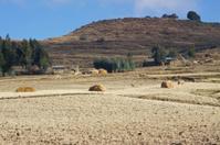 Rural area in Amhara Region