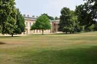 Garden in Cambridge