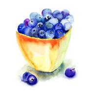 Fresh blueberries in plate