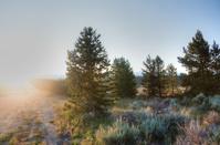 Sunrise in Colorado