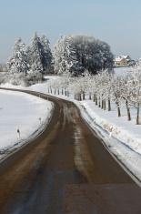 Road in a rural winter landscape