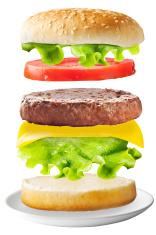 Classic hamburger on isolated background