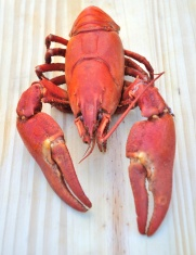 Crawfish cooked