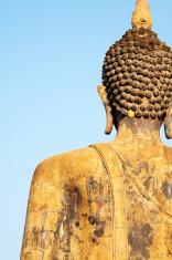 Buddha's back