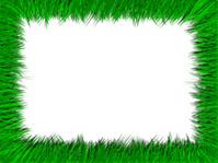 Grassy Frame