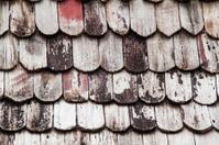 cedar shake roof on a high Sierra mountain cabin.