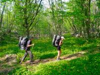 Hikers couple trekking