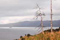 Shore of the  Okhotsk sea.