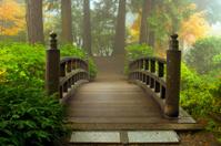 Wooden Bridge at Japanese Garden in Fall