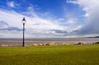 Light pole, grasses and sky