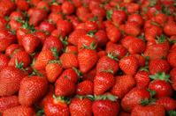 Strawberry fresh natural